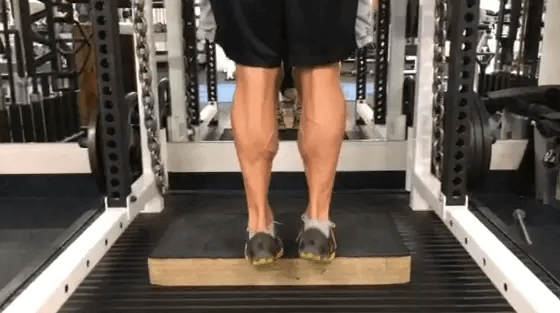 Are Strength Shoes and Jumpsoles Perfect for you Vertical Jumps? 6